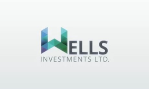 Wells Investments Robot